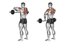 Shoulders Workout for Mass