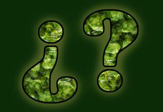 Pregúntale al Lúpulo: Búsquedas (2)