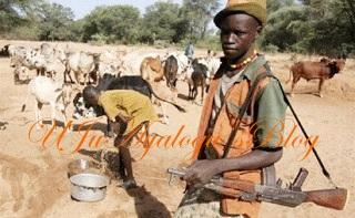 Fulani herdsmen storm Delta community again, 5 killed