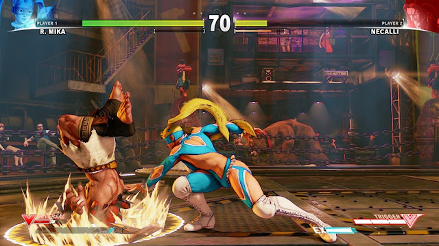 Street Fighter 5 Deluxe Edition Download Photo