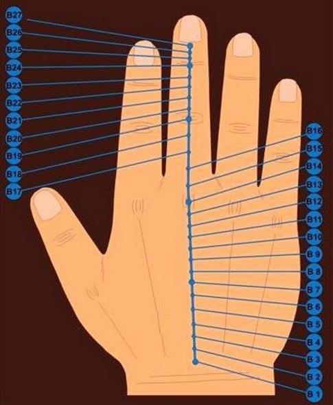 A kormányzó mikro-meridián akupunktúrás pontjai a kézen