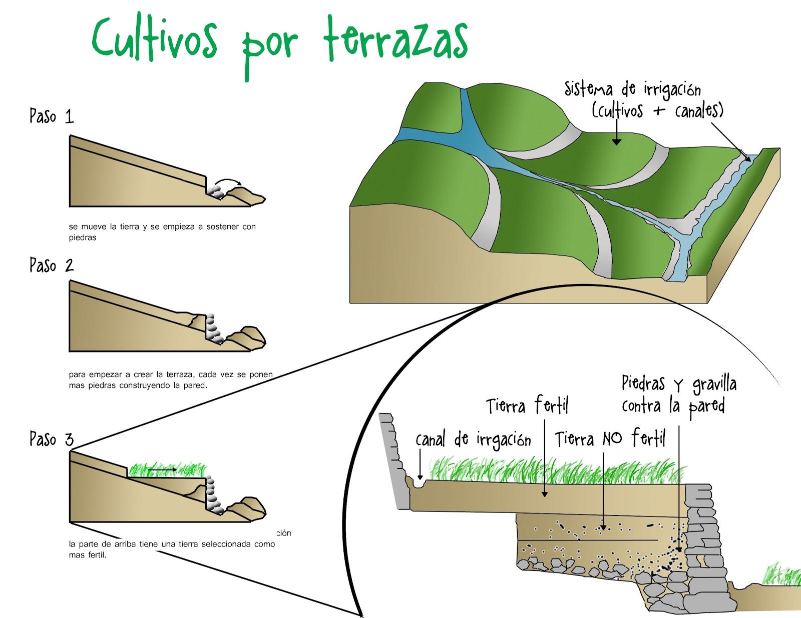 Nuevos Territorios Palomino 2012 Cultivos Por Terrazas