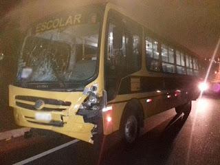 Ônibus com estudantes de Esperança atropela cavalo na BR-230, na Paraíba