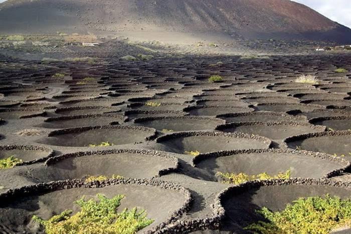 The island of Lanzarote refers to the Canary Islands, Spain. It is also called the island of fire-breathing mountains - on a small island about 60 kilometers long and 15 kilometers wide, about three hundred volcanoes are located