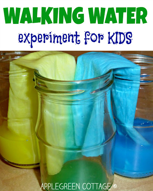 Like messing with colors? Then you'll love this fun experiment: water walking and color mixing activity.