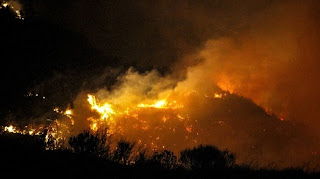 Ηλεία: Εξαφάνιζαν φυτείες χασίς στις περυσινές φωτιές