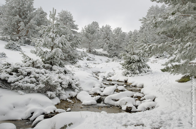 Ruta Senderismo nieve Madrid Guadarrama raquetas