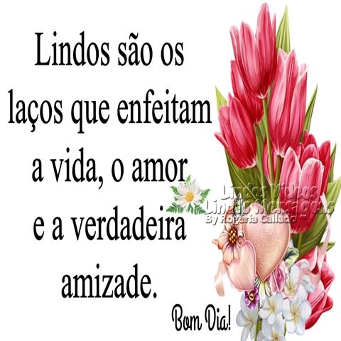 Lindos são os   laços que enfeitam   a vida, o amor   e a verdadeira   amizade.  Bom Dia!
