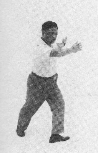 Tai Chi Chuan (Square Form) 51. Step Back Into The Seven Stars Style