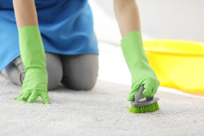 Singapore Carpet Cleaning Tips On How To Remove Mildew