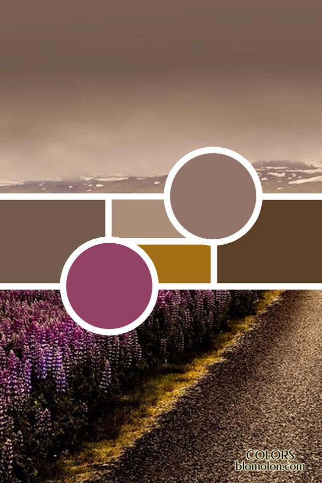 moodboard_variedad_de_colores_5