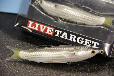 Top 5 Best Mackerel Lure Products