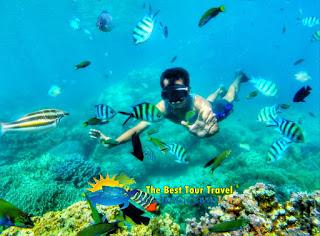 wisatawan berenang di karimunjawa