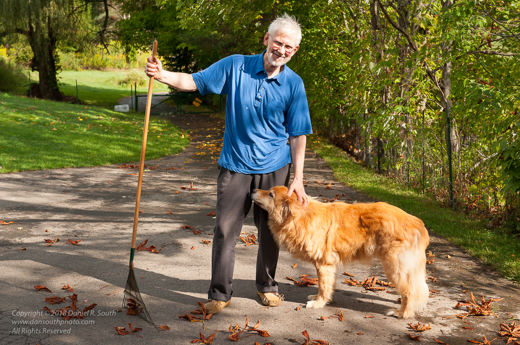 a photo of my father raking leaves with his dog frankly by daniel south