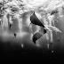 Amazing, Foto Pemenang National Geographic Traveler Photo Contest 2015