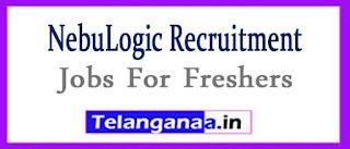 NebuLogic Recruitment 2017 Jobs For Freshers Apply