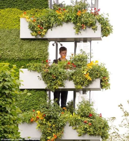 Unusual Garden Ideas: Inspire Bohemia: Unique Garden Planters And Displays