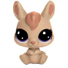 Littlest Pet Shop Abi Kangarooney Generation 6 Pets Pets