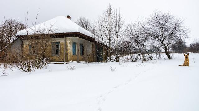 старий будинок у Старій Покровці