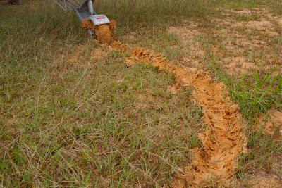 grass landing strip