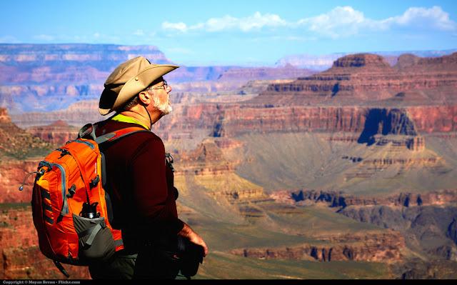 top travel insurance companies
