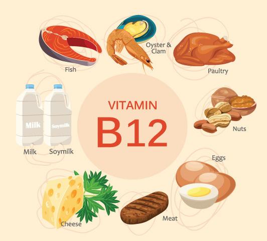 Macam Jenis Vitamin B12 Beserta Fungsi Dan Manfaatnya