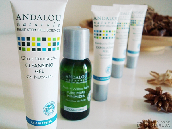 Andalou Naturals clarifying pack iHerb