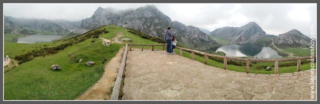 Lagos de Covadonga: Mirador de Entrelagos