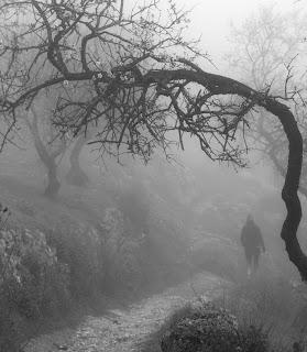 Ruta del Gollizno, Moclín, soledad, amistad