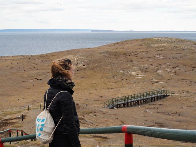 Punta Arenas, Isla Magdalena
