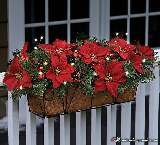 Пуансеттия в новогоднем и рождественском интерьере (3)