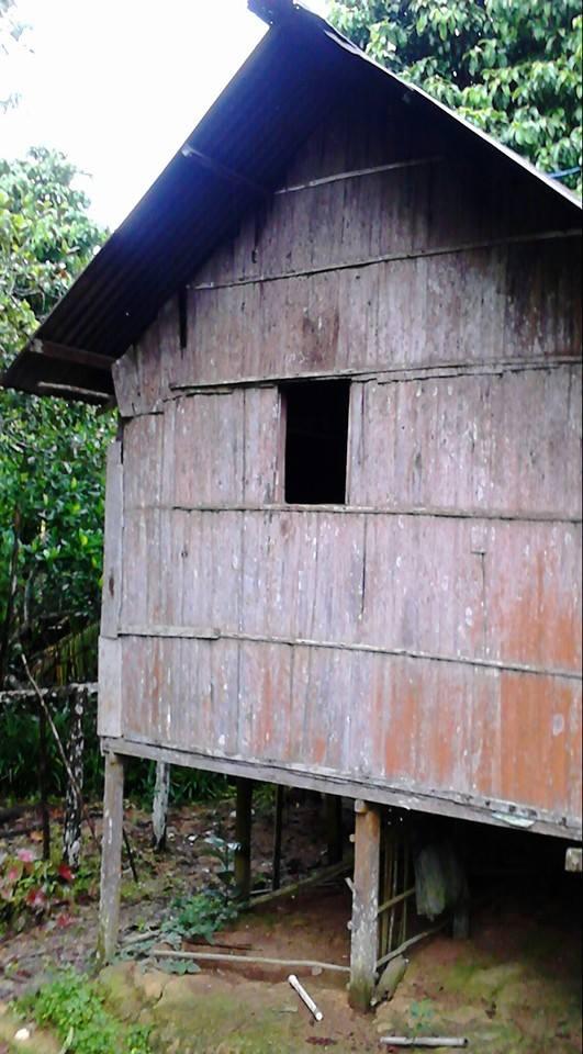 boyan buen rumah kulit kayu