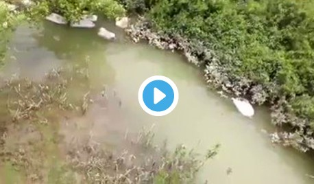 BIADAB! Militer Myanmar Karungi dan Buang Jasad Warga Rohingya ke Sungai!