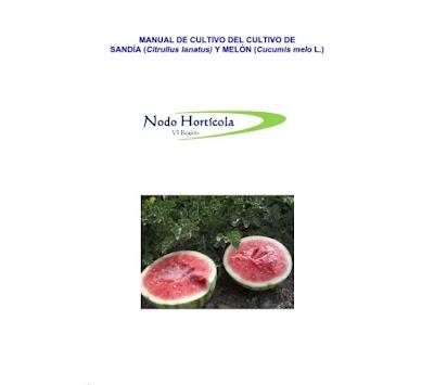 cultivo sandia melon