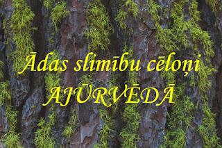 http://www.jutieslabi.lv/2016/01/adas-slimibu-celoni-ajurveda.html