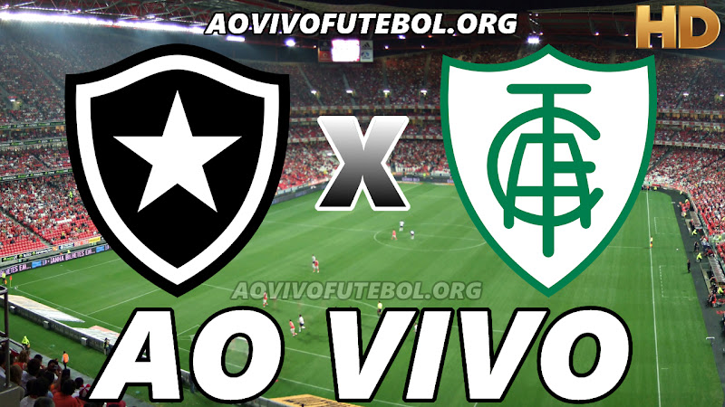 Botafogo x América Mineiro Ao Vivo na TV