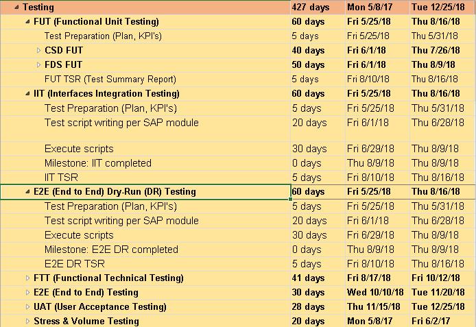 SAP Testing Phase