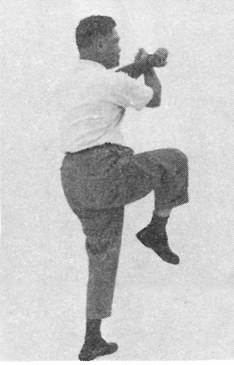 Tai Chi Chuan (Square Form) 40. Raise The Right Leg And Kick Out In A Curve