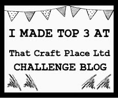 That Craft Place Top 3 - 22nd Feb 2015