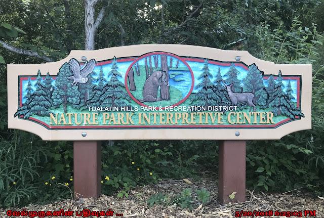 Tualatin Hills Nature Park Beaverton
