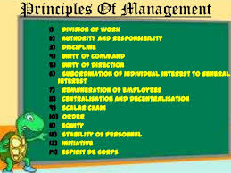 What are the principles of Management