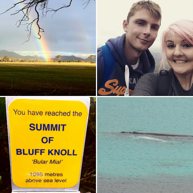 bluff knoll, hiking, mountains, whales, whale watching, adventure, travel