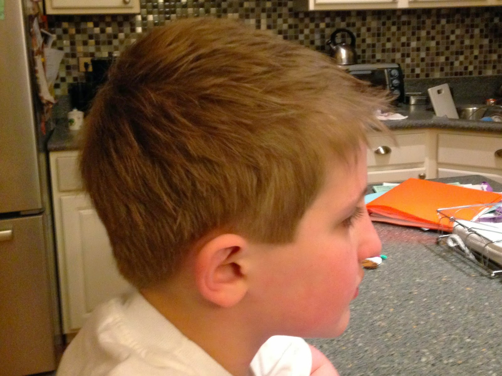 Hairstylist How-to: How to do a Boy's Haircut, Scissor ...