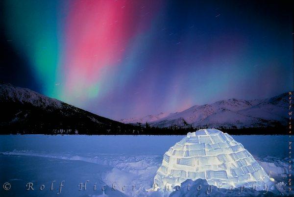 Northern Lights Iceland Igloo