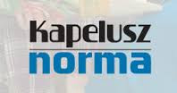http://www.kapelusznorma.com.ar/kapelusz/actividades-para-celebrar-el-17-de-agosto/