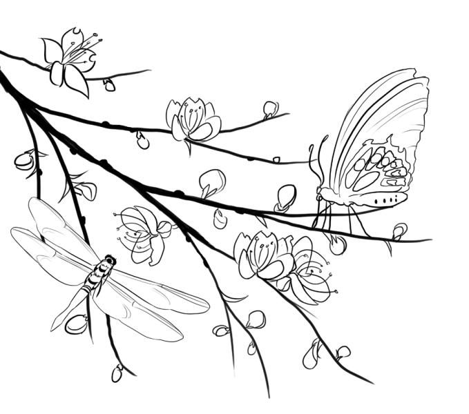 Mewatnai Gambar Kupu Kupu Hinggap Diatas Bunga Contoh Jidiworkoutco
