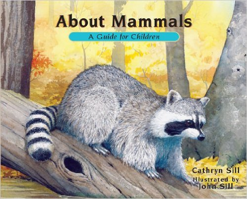 Children's Books About Mammals (Learn & Play Link Up