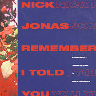 Terjemahan Lirik Lagu Nick Jonas ft. Mike Posner & Anne Marie - Remember I Told You