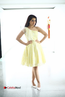Raashi Khanna Latest HD Pictures in Short Dress ~ Celebs Next