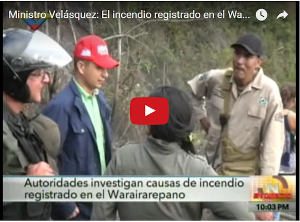 Nestor Reverol acusa a la oposición de incendiar el Ávila